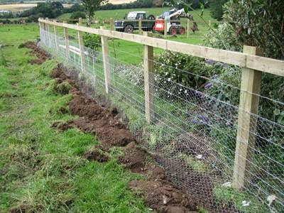 Garden Used Chicken Wire