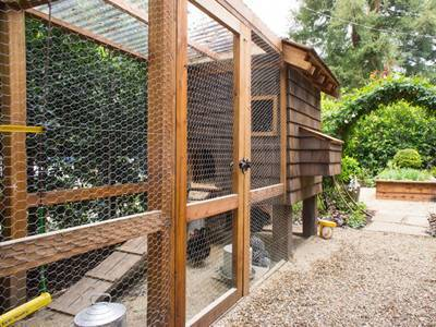 When you enter the door of garden, a greenhouse made by planks and chicken wire mesh would appear.