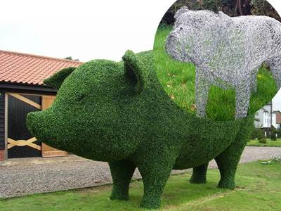 A giant plant pig is placed on a garden.