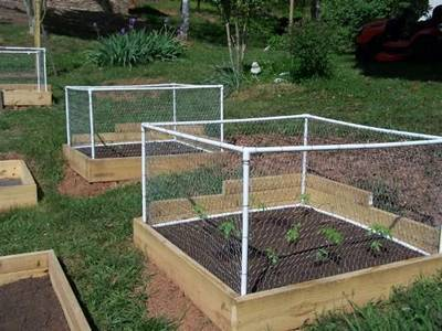 Chicken Wire Mesh Is Made Into Boxes To Protect Plants Grown In A Raised  Bed.