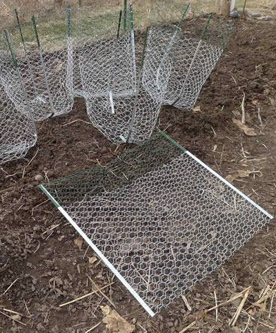 Six gopher baskets with one lying and last standing on ground.