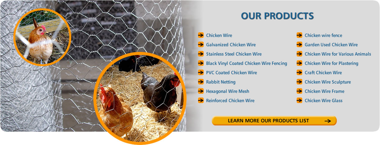 Four chickens with in chicken wire fence, and our chicken wire products listed in this image.