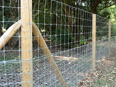 Rabbit wire netting fixed to the bottom of knotted field fence forming a rabbit fencing