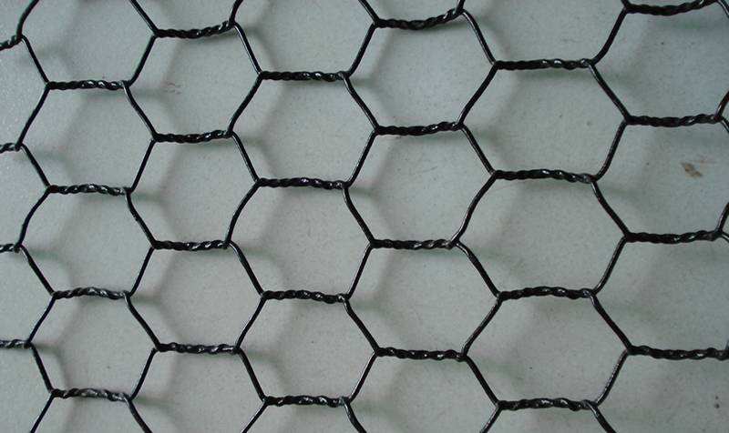 Black Vinyl Coated Chicken Wire Fencing, Size and Characters