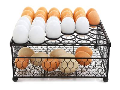 A totally chicken wire mesh made rectangle basket to contain eggs.